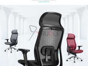 ้ก้าอี้สุขภาพ RD-SH-M23-10