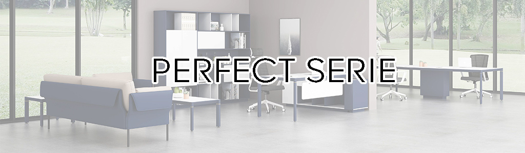 RD-PERFECT SERIE BANNER
